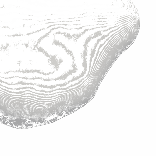 test_path_trace_backplate_small