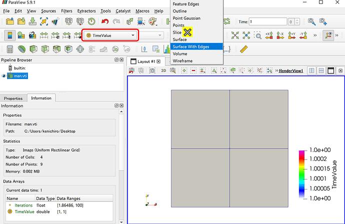 display_field_data